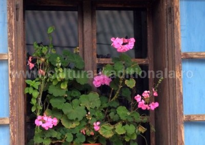 Costas Dumitrescu - Muscata din fereastra