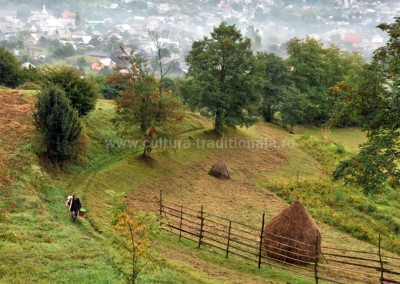 Felician_Sateanu - In drul spre munca - Sacel