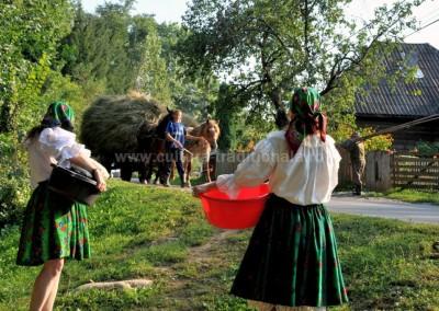 Felician_Sateanu - Rurala - Sarbi
