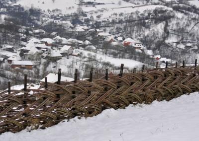 Gheorghe_Petrila - Gard de nuiele - Valeni