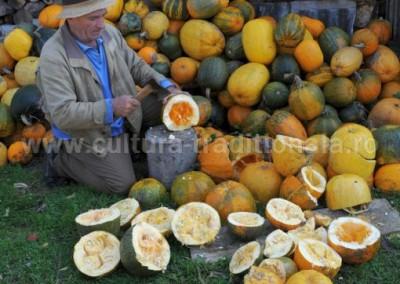 Sateanu Felician - Recoltarea semintelor de bostan - Baita de sub Codru